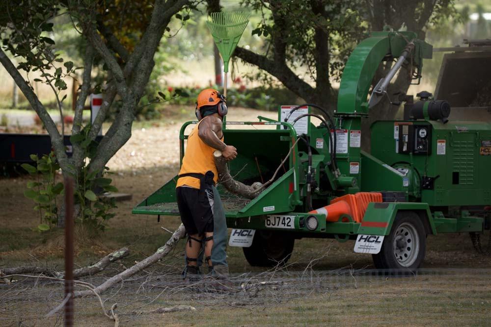 Image of worker using chipping/mulching machine