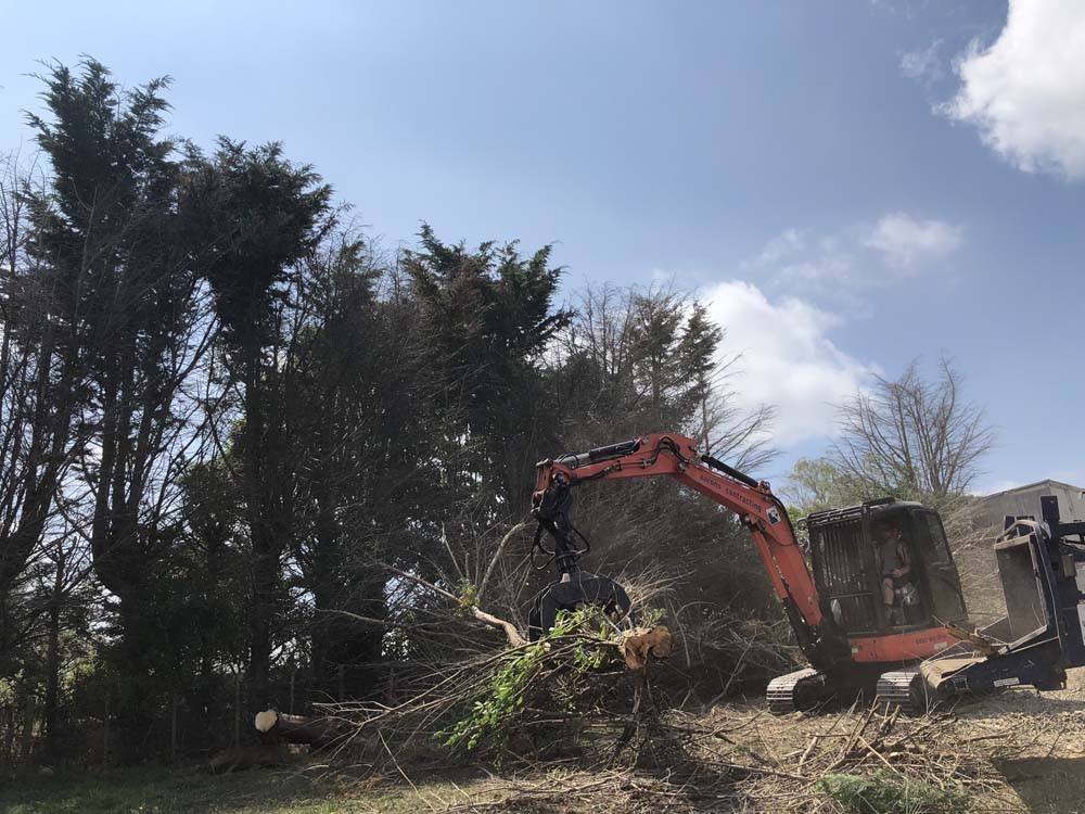 Image of a truck clearing tree on the land